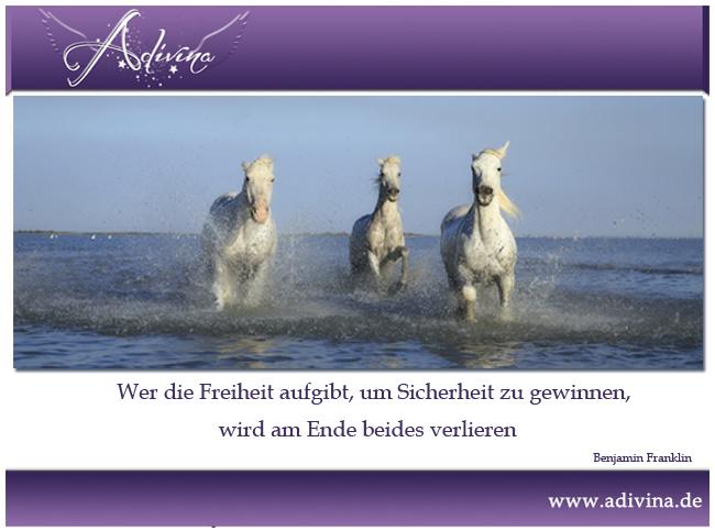freiheit3